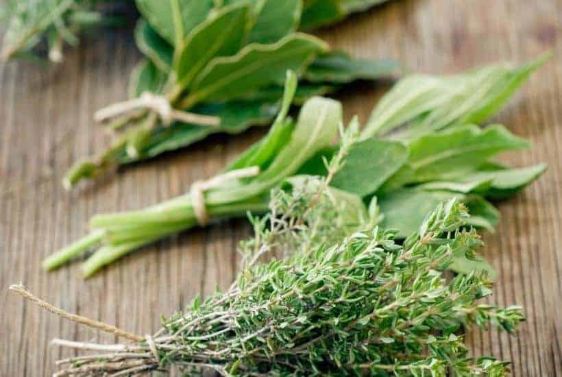 15 Common Cooking Herbs (& How to Use Them!) | kimschob.com