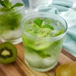 fresh kiwi mojito recipe
